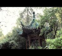 257ers - Warum (Official HD Video)