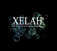 299.UNIKAT CONTEST - XELAH