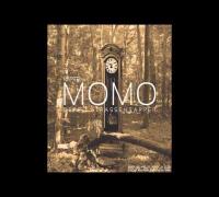 Beppo S. - Persona non grata (Ordinary Roots Remix)
