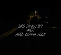 Bird Bankin Boi   AMEN (Official Video Preview)