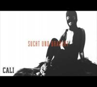 DaJuan - Sucht und Braucht (Bonustrack) - (Cali Mixtape)