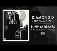 Diamond D - Pump Ya Breaks ft. Rapsody, Boog Brown& Stacy Epps (Audio)
