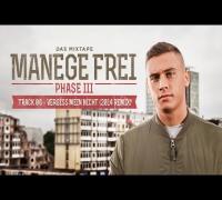 Disarstar - Vergiss mein nicht (Arschritt Lindgren Remix)