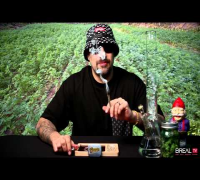 Dr. Greenthumb Strain Review - White Fire | BREAL.TV