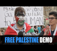 FREE PALESTINE DEMO Hannover: Germany, Gaza, Palästina, Israel, Krieg, Demonstration, Medien, Spende