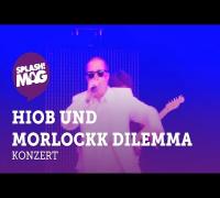Hiob Morlockk Dilemma live auf der Desperados Aruba Stage