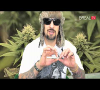 How to Roll a Cypress Hill Phuncky Feel Tip Joint & Blunt | BREAL.TV