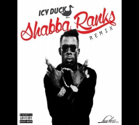 ICY DUCK - SHABBA RANKS (FreeStyle)