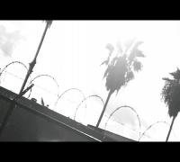 "Karega Bailey, Mark Knoxx, Chaycin Change - ""Sunny Days"" - Directed by @JaeSynth"