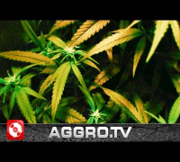 KING KEIL - GREENHOUSE FEAT DJ FASTCUT (OFFICIAL HD VERSION AGGROTV)