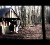 Maskenlos feat. Eddygringo - Es tut mir leid