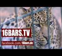 Massiv unterwegs mit Visa Vie im Zoo (16BARS.TV)