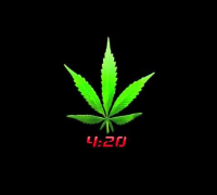 Money Boy - 420