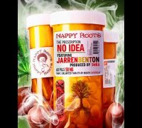 """No Idea""      Nappy Roots feat. Jarren Benton"