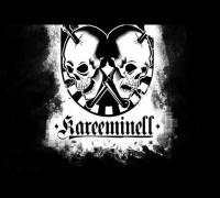 Reeperbahn Kareem - Ich seh die Street (Prod.DevinBeats) (KAREEMINELL RECORDS 2014)