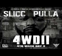 Slick Pulla ft. Rich Homie Quan & Young Buck - Ain't Goin Back
