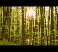 Smoke T - Alien (offizielles Musikvideo)