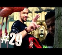 Sonntäglicher Zoobesuch - BOSSHAFT UNTERWEGS #29 BADT-Edition