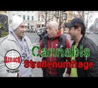 Straßenumfrage | Cannabislegalisierung [feat. Brutos Brutaloz]