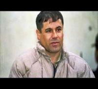 Torch - El Chapo