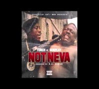 Torch ft. Gunplay - Not Neva
