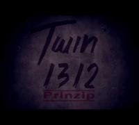 Trailer - TWIN - Stadtverbot (UpnDownTV)