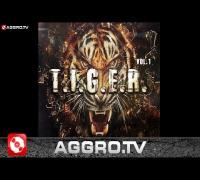 TWIN - HATER FEAT. ALI AS & PRETTY MO - T.I.G.E.R. VOL.1 - ALBUM - TRACK 07
