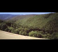 Vega - Ich will raus mit dir: Trailer