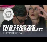 Was geht eigentlich bei: Psaiko Dino und Marla Blumenblatt (splash! 17)