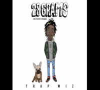Wiz Khalifa - The Rain [28 Grams Mixtape]