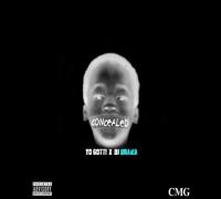Yo Gotti - Concealed (2015 Full Mixtape) Ft. Jadakiss, Kevin Gates, Shy Glizzy, Lil Bibby,Lil Boosie